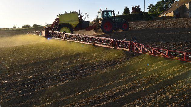 L'herbicide glyphosate, commercialisé sous le nom «Round Up» est considéré comme