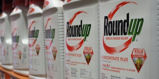 États-Unis: premier procès sur les effets cancérigènes allégués du RoundUp de