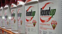 Premier procès sur les effets cancérigènes allégués du RoundUp de