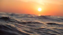 BLOGUE Nous sommes les vagues d'un même