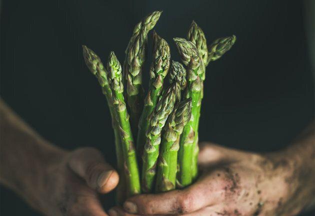 Attention! Les légumes se rarifieront à cause du réchauffement