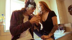 Cannabis: les propriétaires de logements inquiets plus que