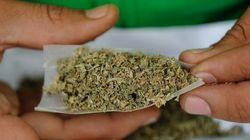 J'ai déjà inhalé de la marijuana et j'ai aimé