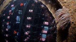 Le vin sous-marin, nouvelle folie en