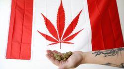 Le cannabis se retrouvera au coeur d'une offensive publicitaire