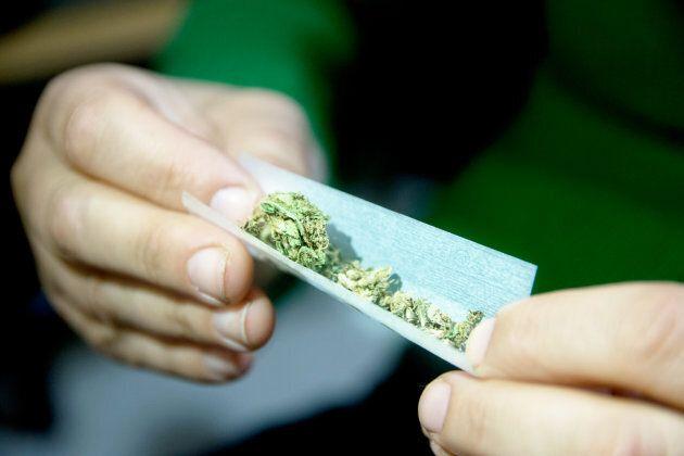 S'initier au cannabis sans tomber dans les