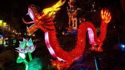 Fini les marées de monde aux lanternes du Jardin