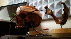 Il utilise un crâne humain pour créer la musique d'un jeu