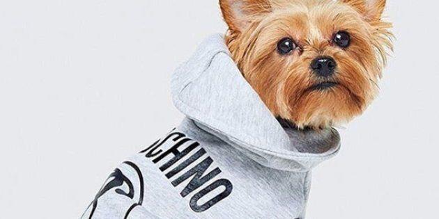 H&M va vendre des vêtements pour
