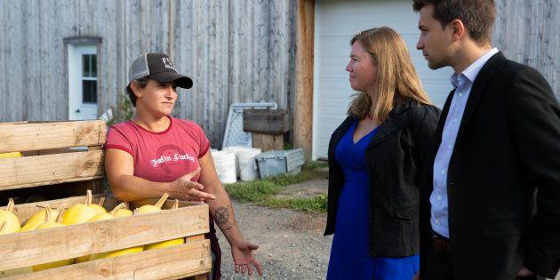 Québec solidaire veut créer un Fonds pour aider les artistes en