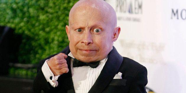 Verne Troyer: l'acteur qui a incarné Mini-Moi est mort par intoxication à