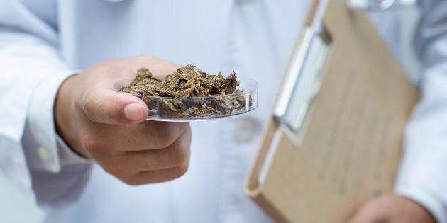 Société du cannabis: Des syndicats s'activent pour rallier les