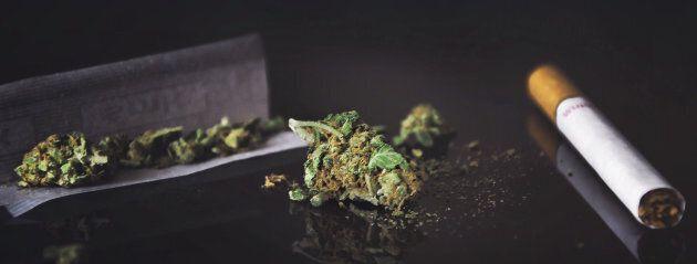 Sept mythes sur le cannabis et sa