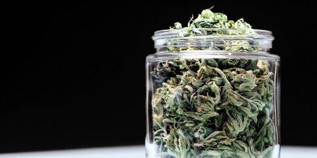Le système de prohibition des drogues, en place depuis maintenant plus de 100 ans, n'a jamais su remplir...