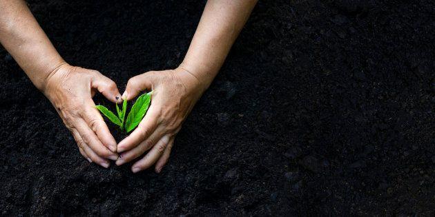 Environnement: les Québécois invités à signer un «Pacte pour la