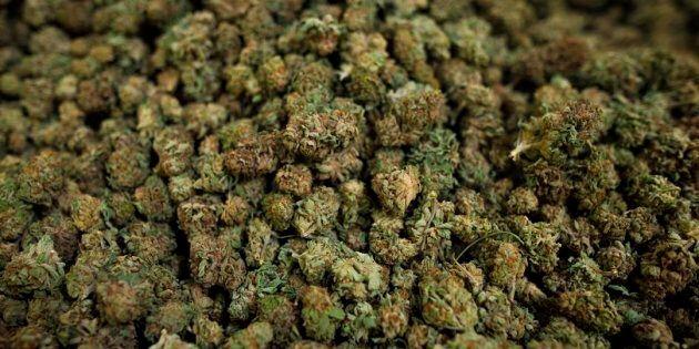 Kahnawake s'apprête à légaliser la vente de cannabis sur son