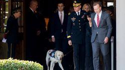 Le chien de George H. W. Bush l'accompagne pour son dernier