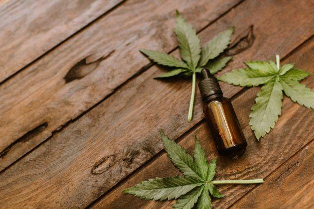 Le ministre Carmant suggère aux locataires de se tourner vers l'huile de cannabis ou les recettes au cannabis.