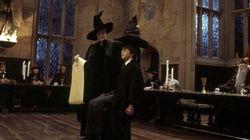 Vous ne verrez plus jamais le Choixpeau d'Harry Potter comme