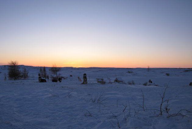La rivière gelée d'un côté, l'horizon vallonné et dénudé d'arbres de l'autre. On ne croise personne sur la route, mais une quinzaine de chiens de traîneaux. Et ici et là, de petites cabanes de bois.