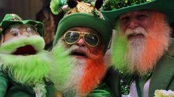 Défilé de la Saint-Patrick: demande d'aide lancée au