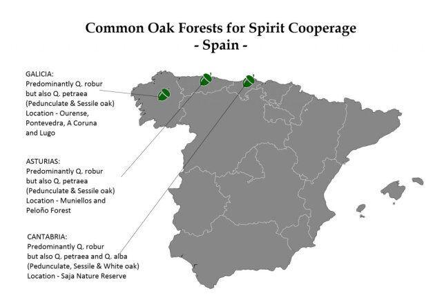 Carte des forêts de chênes en Espagne