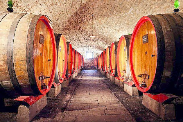 Grands foudres de Chianti Classico en Toscane