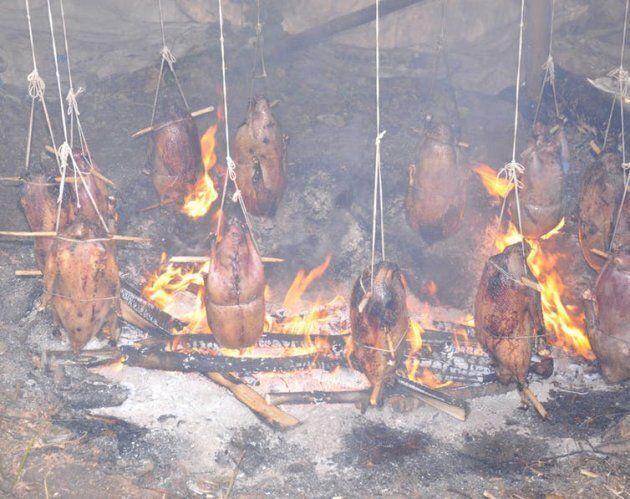 Des membres de la communauté Cri de la Baie James, au nord du Québec, font rôtir des oies sur le feu.