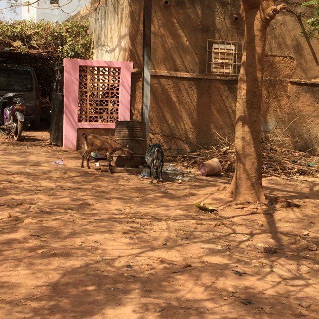 Maison type d'un quartier de classe moyenne à Ouagadougou. Plusieurs maisons disposent d'une cour intérieure,...