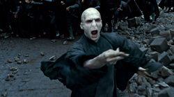 Le préquel d'Harry Potter «Voldemort: les origines de l'héritier» écrit par les fans est