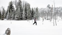 Accès gratuit à 13 parcs nationaux samedi: c'est la Journée