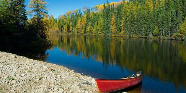 Composée de cinq MRC et de quatre circonscriptions provinciales: Arthabaska, Drummond-Bois-Francs, Johnson...
