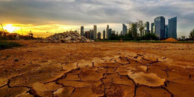 Les Ford, Trump et Bolsonaro de ce monde nous entraineront dans des reculs catastrophiques. Le «tout à l'économie» continue à justifier des choix irresponsables.