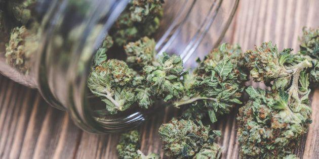 Il est tout à fait normal que plus de Québécois aient déclaré consommer du cannabis dernièrement, maintenant...