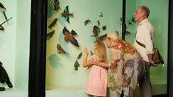 La Journée des musées montréalais fête ses 30 ans cette fin de