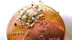 Ottawa veut interdire les microbilles en plastique dans certains