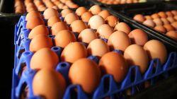 Harvey's et Chalet suisse utiliseront des oeufs de poules en