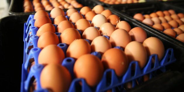Collected eggs await processing at the Mulloon Creek Natural Farm in Bungendore, Australia, on Thursday,...