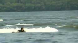 Des milliers d'adeptes de surf à... Montréal