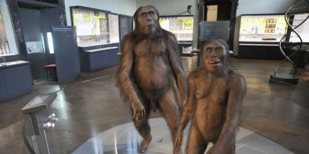 VIENNA, AUSTRIA - SEPTEMBER 29: The figures of Homo Sapiens are displayed during the Naturhistorisches...