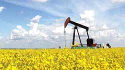 Alberta: les redevances sur les sables pétrolifères resteront