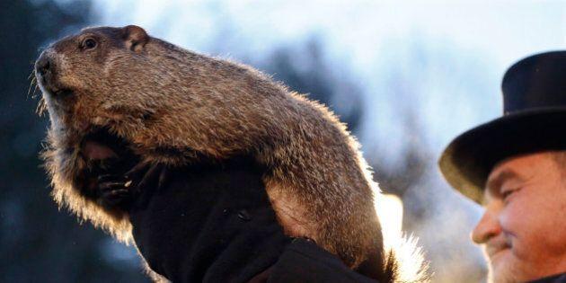 Groundhog Club co-handler John Griffiths holds Punxsutawney Phil during the annual celebration of Groundhog...