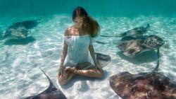 Ces superbes photos vous convaincront d'essayer le yoga sous