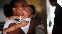 Zika: l'OMS décrète «une urgence de santé publique de portée mondiale»