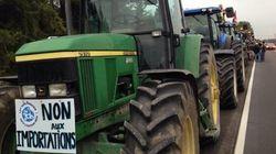 Des agriculteurs sortent de leur champ pour protéger la gestion de