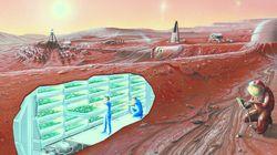 Une maison sur Mars, d'accord, mais avec quoi dedans?