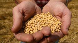Monsanto va supprimer 2600