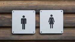 La bataille des toilettes pour transgenres fait rage en