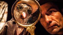11e festival de Casteliers: poésie, humour et créativité pour les