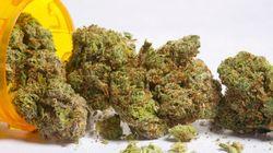 D'ici huit mois, du cannabis dans les pharmacies de